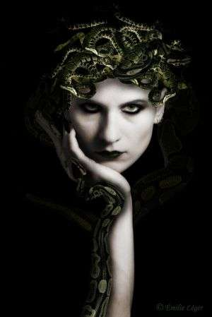 Image for the poem MEDUSA