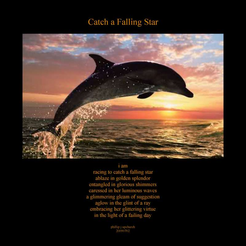 Visual Poem Catch a Falling Star