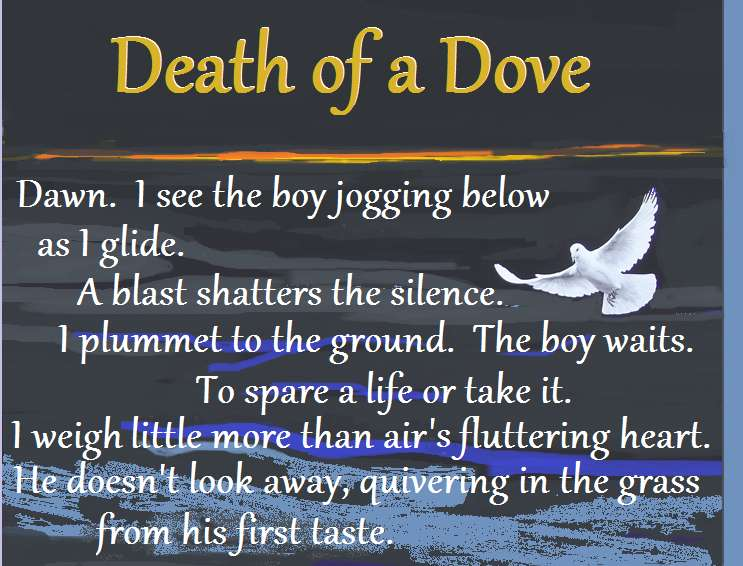 Visual Poem Death of a Dove