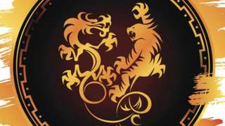 Image for the poem Yin Tiger, Yang Dragon