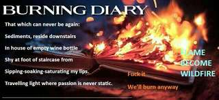 Burning Diary In A Shipless Ocean