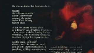 The Elusive~ Truth., That The Moon She Is..